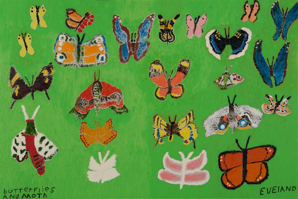 Butterflies and Moth by Mary Eveland